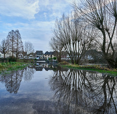Flooding in Zündorf (hbothmann) Tags: köln nrw deutschland zündorf groov hochwasser groovzündorf flood oversvømmelse inundación inondation inondazione overstroming inundação powódź översvämning 洪水 cologne colonia colônia variosonnar163528za