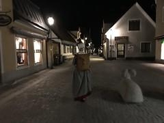 DLG-Gotland 3-3 (greger.ravik) Tags: visby medeltidsveckan medeltid middle ages medieval korg får dlg