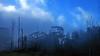 Maui, misty road downhill (gerard eder) Tags: world travel reise viajes america northamerica hawaii usa unitedstates maui fog tree trees clouds wolken nubes tropical tropicalisland tropicalislands island outdoor