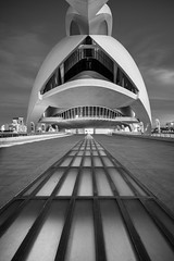 Welcome to the Future (McQuaide Photography) Tags: valencia spain europe sony a7rii ilce7rm2 alpha mirrorless 1635mm sonyzeiss zeiss variotessar fullframe mcquaidephotography lightroom adobe photoshop tripod manfrotto city urban architecture outdoor outside building longexposure evening bluehour cityofartsandsciences ciutatdelesartsilesciències ciudaddelasartesylasciencias modern modernarchitecture architecturalcomplex 12treasuresofspain santiagocalatrava attraction tourism travel touristdestination famousplace icon iconic futuristic future science scientific operahouse entertainment opera 2005 queensofíapalaceofthearts performingarts dragados necso palaudelesartsreinasofia wideangle blackandwhite bw monochrome mono blackwhite portrait entrance lines perspective