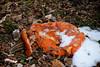 Pumpkin Mush (Jules (Instagram = @photo_vamp)) Tags: pumpkin jackolantern snow rotting stuffinmybackyard saginawmichigan december