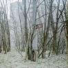 Red Star, Ukraine (Sly Panda) Tags: sly panda carl zeiss jena 80mm biotar praktisix iia pripyat chernobyl ukraine trees nature takeover communist star