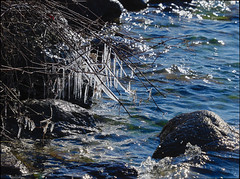PC212897 (Paul Henegan) Tags: fortpond montaukny yule blur branchlets highlights icicles rocks shadows water wavelets winter