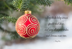 Merry Christmas and thanks for a year of inspiration! (Nancy Rose) Tags: christmas ball ornament sparkle tree evergreen outdoors verse greetingcard redandgold 4048
