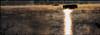 SEIGNOSSE ETANG BLANC BRUME ET BROUILLARD SEIGNOSSE WHITE POND MIST AND FOG                UME ET BROUILLARD (dudulandes) Tags: artistique aquitaine amateur ambiance agua affut beaute bois canon capbreton couleur color calme esthetique eau exposition experience etang france french forest hossegor insolite landes landaise lumineux landscape matin mer maree matinale nature natural naturelle ocean original océano paysage seignosse wave water extreme