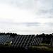Solar Panels Cleantech Green