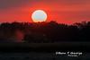 HARVEST-RED-SKY-2-9-10-MILDENHALL (Benn P George Photography) Tags: rafmildenhall 2910 bennpgeorgephotography mc130p 660215 mc130h 870023 sunsets c130e 621851 harvest 74747uf atlasair n498mc peacockbutterfly