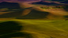Palouse Color #5 (Perry J. Resnick) Tags: 2017 pjresnick palousewa perryjresnick pjresnickgmailcom pjresnickphotographygmailcom ©2017pjresnick ©pjresnick nature light fuji fujifilm atmosphere atmospheric digital shadow texture shadows yellow angle perspective naturallight xf fujinon resnick outdoor green brown orange rectangle rectangular color colour xpro2 fujifilmxpro2 landscape washington fujinon55200mm 55200mm sunset evening sundown grass field 16x9