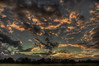 Clouds moving in (Klaus Ficker --Landscape and Nature Photographer--) Tags: clouds redclouds sunset evening fog landscape nature germany kentuckyphotography klausficker canon eos5dmarkii