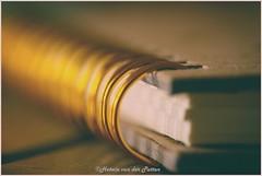 Spiral Macro Monday (Hetwie) Tags: spiral redux2017 myfavoritethemeoftheyear macro macromonday spiraal helmond noordbrabant nederland nl