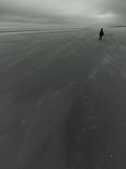 la balade de Tim (pierre-vdm) Tags: plage beach strand mer sea meer sable sand enfant kid child kind vide empty emptiness leer solitude loneliness einsamkeit nord north noiretblanc nb blackandwhite bw schwarzweis sw braydunes france merdunord nordsee tim