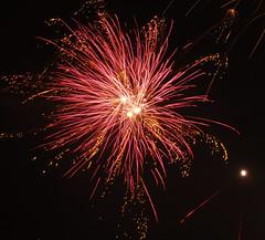 Fireworks (EvelienNL) Tags: firework fireworks vuurwerk newyearseve newyear oudennieuw nieuwjaar nieuwjaarsnacht jaarwisseling nacht night nighttime sky light lights colours colourful sparkles sparkling festive celebration pink roze