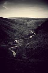 We'd go down to the river  And into the river we'd dive (Livesurfcams) Tags: devon somerset exmoor river moor nikon d800