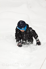 Undaunted 1 (LongInt57) Tags: boy child children snow winter cold deep struggle struggling courage determination white grey gray blue weather kelowna bc canada okanagan outside outdoors