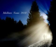 """""""Le Retour"""" (clairetresse) Tags: lansenvercors hâlo lumière soleil sapins neige hiver froid montagne france"""