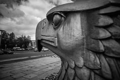 Flughafen Tempelhof (Berlin-Knipser) Tags: berlin blackandwhite bw blackwhite germany deutschland artinbw schwarzweis schwarzweiss sw sonya7ii tempelhof thf flughafentempelhof