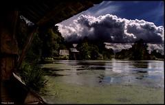 Bazouges sur le Loir (Sarthe) (gondardphilippe) Tags: bazougessurleloir sarthe maine paysdelaloire loir landscape rivière river ciel eau nuage cloud arbre tree sky ngc
