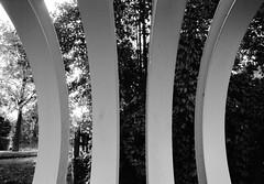 Smooth geometry (zoltannagel) Tags: mamiya zm sekor e 28mm f35 kodak tmax 100 35mm black white negative film analog bw reflecta proscan 7200 ilford ilfotec lc29