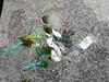 Rubbish haul (Figgles1) Tags: p1100218 coogee portcoogee port north wall suesgroyne sues groyne groynes snorkel snorkeling rubbish garbage trash fishing line