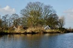 DSC06169 (hofsteej) Tags: holland middendelfland zuidholland netherlands vlaardingervaart broekpolder natuurmonumenten vlaardingen december