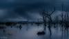 Skeleton Tree DSC_0973 (BlueberryAsh) Tags: landcapes wintonwetlands glamping skeletontree deadtrees nightscape cloudsstormssunsetssunrises moody blue longexpsoure storm clouds water lake nikond750 nikon24120