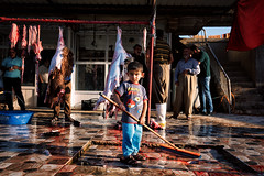 Angry bird, a young butcher in Kurdistan (rvjak) Tags: irak iraq kurdistan butcher boucher enfant kid blood sang middleeast moyenorient d750 nikon garçon boy
