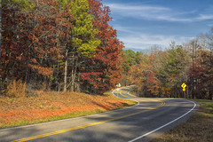 The Scenic Curve (Thomas Vasas Photography) Tags: travel landscapes scenics scenicroadways mountainroads roads trees grass clouds sky fall seasons fdrstatepark pinemountain georgia