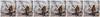 Merle d'Amérique - multiptyque (StefDenis) Tags: animauxoiseaux constructionesplanadeplaceetjardin jardinbotaniquedemontréal male merledamérique passeraux photostypedetraitement triptyque