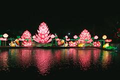 Wild Lights (Strangelove 1981) Tags: 2017 dublinzoo ireland wildlights zoo night lights glow light animals festival water lake reflection flowers
