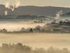 Winter fog (Dan Österberg) Tags: winter cold frost fog mist industry smoke residentialarea houses trees golden light backlight landscape beautiful norway bergen