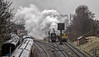 Little engine, big show (Peter Leigh50) Tags: great central railway loughborough steam jinty 47406 gcr train trains trees water tank tower shed carriage track tracks rail railroad line rain dull
