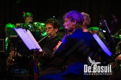 2017_01_07 Nieuwjaarsconcert St Antonius NJC_3032-Johan Horst-WEB