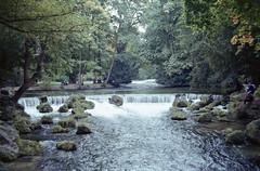 Munich, Germany (floripondiaa) Tags: fujica stx1 film 35mm florishootsfilm munich germany