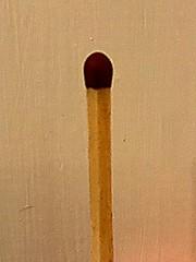 """Macro Mondays - """"Stick"""" (hp349) Tags: mondays monday mm hmm match matchstick stick macromondays macro"""