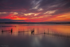 My Dreamed Sunset XI. (dasanes77) Tags: canoneos6d canonef1635mmf4lisusm tripod landscape seascape cloudscape waterscape clouds colors sunset epic dramaticsky orange red blue bluehour reflections shadows nets lake albuferaofvalencia valencia