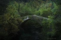 Medieval bridge (Monica Muzzioli) Tags: bridge medieval middleages forest toscana tuscany garfagnana textures