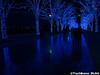 aonodokutsu005 (et_dslr_photo) Tags: xmas illumination 青の洞窟 shibuya yoyogi blueled night nightview nightshot hdr