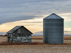 02  A sunrise sky that lasted till sunset (annkelliott) Tags: alberta canada seofcalgary scenery landscape building structure shed barn old weathered abandoned wooden rural ruraldecay ruralscene silo metal sidebyside field stubble snow mountains sky clouds outdoor fall autumn 17december2017 fz200 fz2004 p1270675 panasonic lumix annkelliott anneelliott ©anneelliott2017 ©allrightsreserved