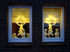 Waiting for Santa (BrigitteE1) Tags: weihnachten christmas christmastime eisbär polarbear light window fenster waitingforsanta weihnachtszeit weihnachtszauber marktundstrasenstehnverlassen themarketandstreetsstandstillandghostly josephvoneichendorff bilder fotos pix pics images pictures poem gedicht sundaylights christmasspirit