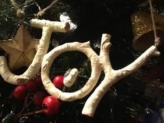 Joy ... (Mr. Happy Face - Peace :)) Tags: joy christmas festive love goodness faith art2017 ornament tree berries star bell