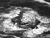 The Other Rock (B&W) (jonhuskisson) Tags: rock sea water waves birds pointreyes california usa travel blackandwhite blackwhite bw monochrome