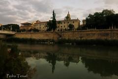 Amanecer en el Río Segura (Murcia) (pedrojateruel) Tags: murcia segura catedral cascales