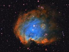 Monkey Head Nebula (NGC2175) (ferri.andrea) Tags: ngc2175 sbig stf8300m cielo deep sky nebulosa narrow band skywatcher eq6 stelle notte orione orion star profondo ngc astrometrydotnet:id=nova2385304 astrometrydotnet:status=solved