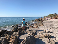 "caspersen beach (""One who sits by the fire"") Tags: rocks rockybeach gulfcoast gulfofmexico caspersenbeach florida wife mywife searchingforfossilsharksteeth"