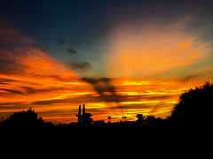 The Day the Earth Stood Still (oybay©) Tags: arizona sunset winter sky cloud outdoor dusk serene field landscape bright skyline tree grass sun city west colorful color tonight monsoon weather clouds summer fall silhouette colros sunshower shower backyard nikon cactus hardtosee amazing