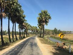 Myanmar, Ayeyarwady Region, Hinthada District, Myanaung Township, Tar Gwa Te Gyi Kone Village Tract (Die Welt, wie ich sie vorfand) Tags: myanmar burma surly crosscheck bicycle cycling hinthada ayeyarwady irrawaddy hinthadadistrict ayeyarwadyregion myanaungtownship myanaung targwategyikone roadsign