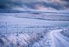 Delayed (Premysl Fojtu) Tags: field bales snow landscape orkney scotland island colour