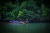 20171115 DSC_3737 6000 x 4000 (Kurukkans) Tags: kurukkans krabi thailand sea beautifulplace water monkey tourists islands speedboat boats