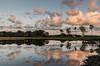 Colourful clouds (Mariannevanderwesten) Tags: reflection reflectie rozenven roosendaal nikon nature natuur clouds wolken avondlicht eveninglight