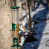 Titmouse on Feeder (pBeckwermert) Tags: waynenj tuftedtitmouse eating winter backyard woods birds flickr woodlands wildlife birdfeeder bird shutterstock 2018 highmountain feeder nature nj